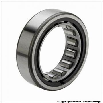 NTN  SL01-4876 SL Type Cylindrical Roller Bearings