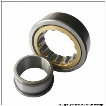 NTN SL02-4832 SL Type Cylindrical Roller Bearings