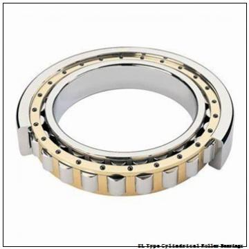 NTN SL02-4844 SL Type Cylindrical Roller Bearings