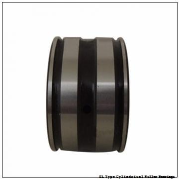 NTN SL02-4934 SL Type Cylindrical Roller Bearings