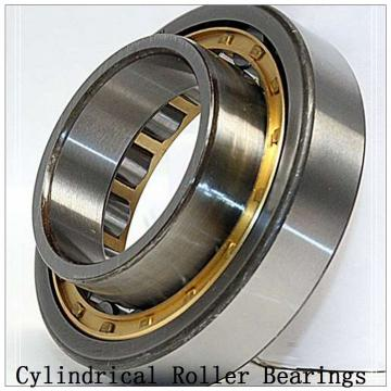 NTN SL01-4972 SL Type Cylindrical Roller Bearings