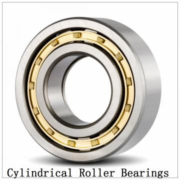 NTN  SL02-4922 SL Type Cylindrical Roller Bearings