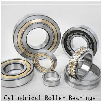 NTN  SL02-4838 SL Type Cylindrical Roller Bearings