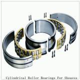 NTN SL04-5028NR SL Type Cylindrical Roller Bearings for Sheaves