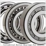 NTN SL04-5038NR SL Type Cylindrical Roller Bearings for Sheaves